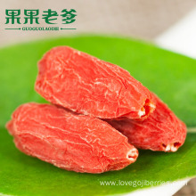 Cheap for Red Low Pesticide Goji Berries Best Sales Wolfberry From Ningxia 2018 export to Tokelau Supplier