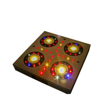 Hydroponic Gardening 300W LED Grow Light