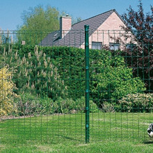 Hot Sale Euro Style Welded Wire Fence Roll