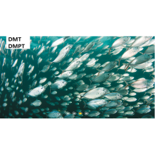 OEM/ODM for Aquatic Feed Shrimp Crab attractant Fish--DMPT export to Gibraltar Suppliers