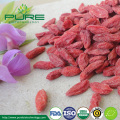 Organic Goji Berries, dried, in bulk