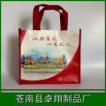 Laminated Nonwoven shopping bags