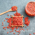 Best organic dried goji wolfberry for sale