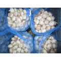 Loose Bag Normal white garlic of 10kg