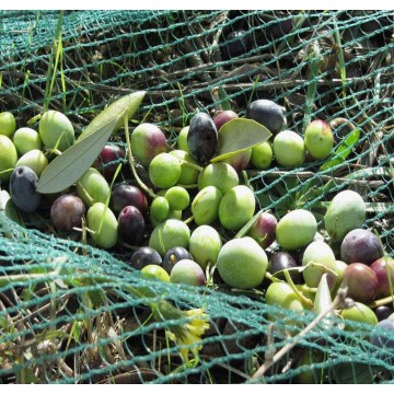 HDPE agriculture olive packing net
