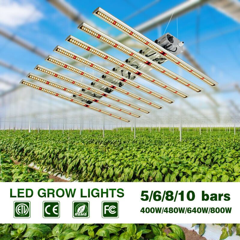 640W LED Grow Light
