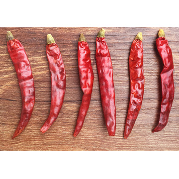 Dry Chaotian Chili with red color