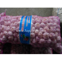China for Natural Fresh White Garlic Hot Selling in Market Fresh Normal White Garlic supply to Zimbabwe Exporter