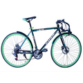 Safe and Green Folding Track bicycle