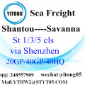 FCL LCL Container Shipping to Savanna