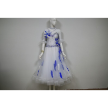 High Performance for China Ladies Ballroom Dress,Ballroom Dresses Amazon,Ballroom Gowns Canada Supplier Salsa costumes for competition BE export to Malaysia Importers