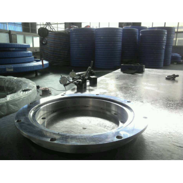 RTC325 Slewing Ring Bearing