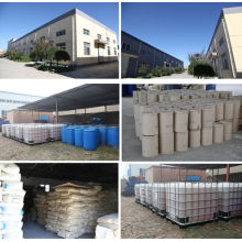 Hot sale for Waste Water Clarifier Algaecide Cleaner 60 For Pool export to United States Factories