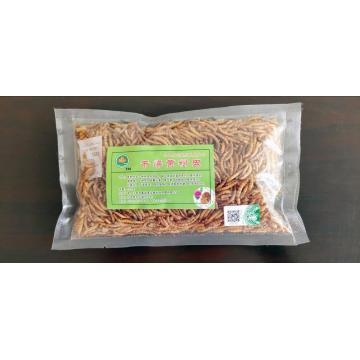 mealworm for pet parrot