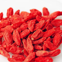 China for Dried Red Goji Berries Loose Chinese Red Goji Berries export to United States Supplier