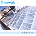 Snow world 5T Containerize Block Ice Machine