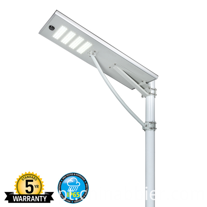 Solar Path Lights (17)