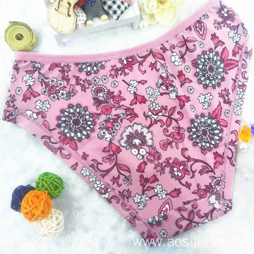 China wholesale new style printed floral cameo brown sexy briefs bamboo fiber hipster 510