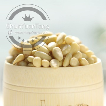 Best price cedar pine nut kernel