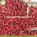 Factory Supply Fruits Nutrition Sexual Strength Goji Berry