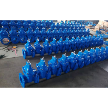 Ductile Iron Resilient Seated Gate Valves