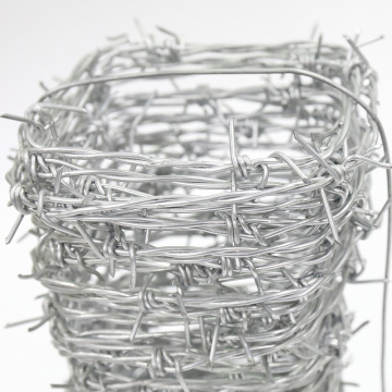 Various Length Galvanized Barbed Wire