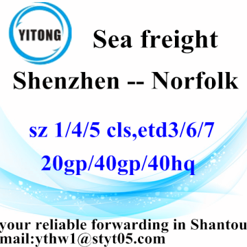 Shenzhen to Norfolk Ocean Freight Forwarding Agent
