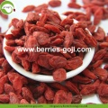 Supply Buy Nutrition Healthy Wolfberries
