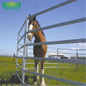 useful animals of Cattle panels Horse fence