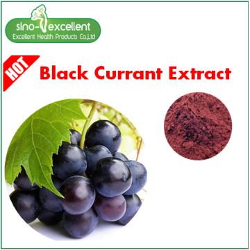 Blackcurrant Ribes nigrum 35% Anthocyanins