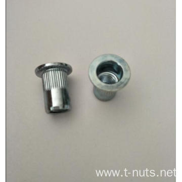 Blind Rivet Zinc Plated Tee Nut