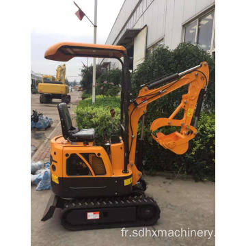 1Ton mini machine de pelle d'or de digger