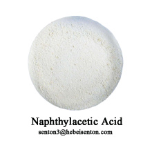Organic Compounds of Naphthalenes Naphthylacetic Acid