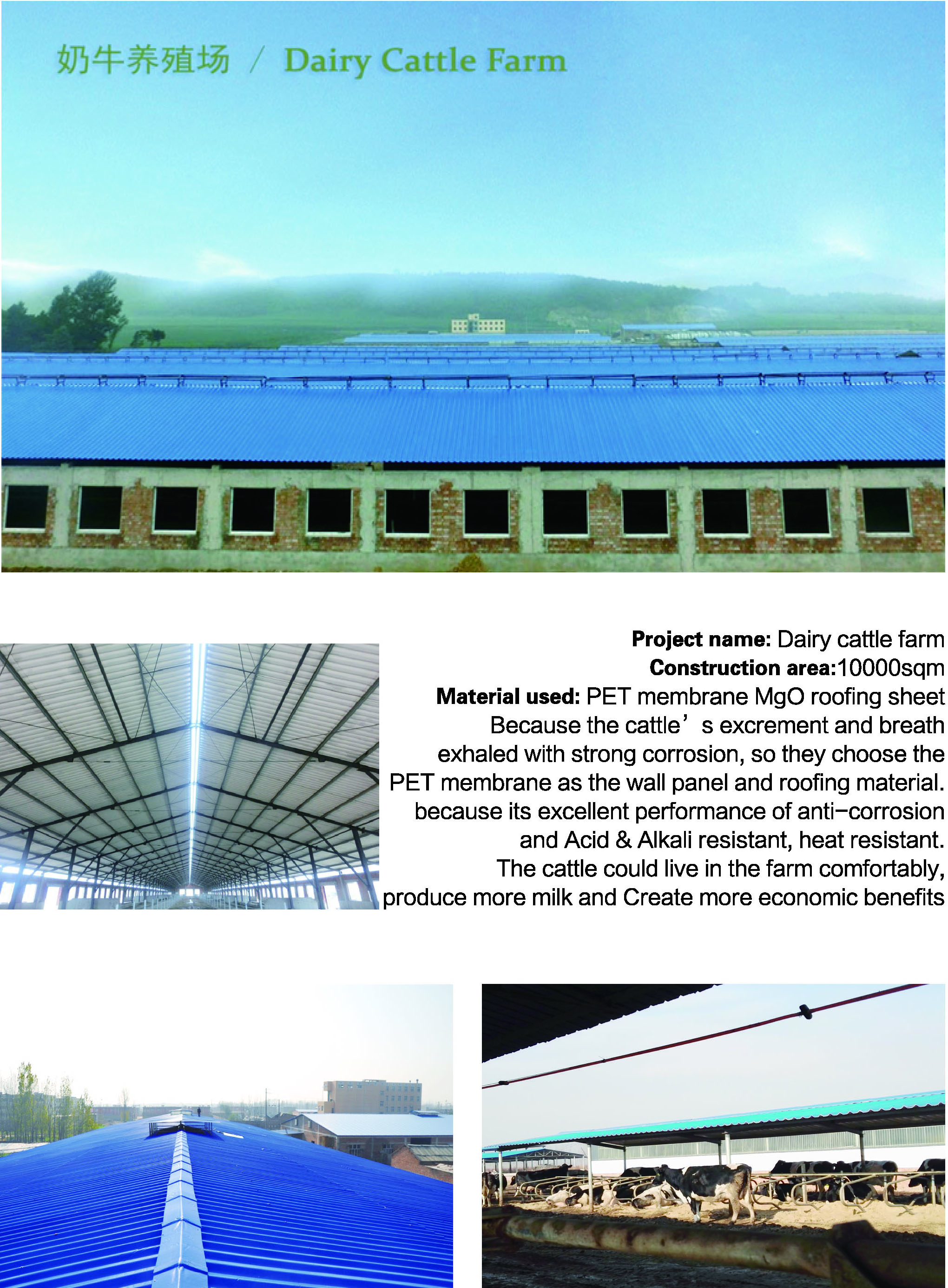 Workshop Roof Sheets