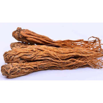 Angelica Root Essential Oil 30ml