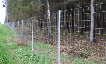 Horse Field Fence