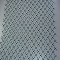 Anping Deming Factory Quality Guaranteed Beautiful PVC/PE Coated Dark Green Steel Wire Mesh Fence