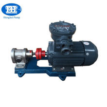 Stainless steel food grade oil transfer gear pump