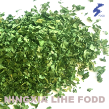 Parsley leaves Air dried granula