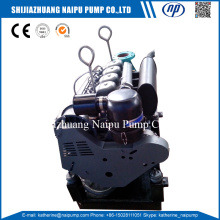 New Delivery for IS Clean Water Pumps,Fresh Water Pump,Clear Water Pump Suppliers in China Diesel Engine Irrigation Water Pump export to Germany Importers