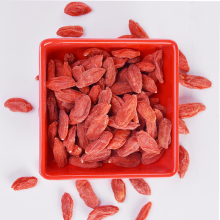High Quality for Best Conventional Goji Berry,Ordinary Goji,Slimming Diet Berry,Low Moisture Goji Berry Manufacturer in China Natural and Organically Grown Goji berry bulk export to Qatar Supplier