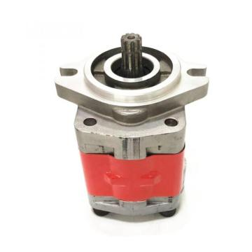 Case IH external gear pump