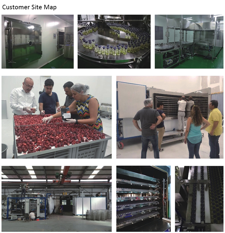 pharmaceutical production freeze dryer
