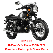 QINGQI Cafe Racer250R EFI Complete Motorcycle Spare Parts