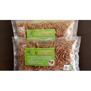pet feed of yellow mealworms