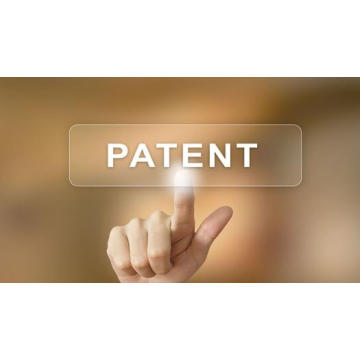 What are the Characteristics of the Patent?