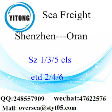 Shenzhen Port LCL Consolidation To Oran