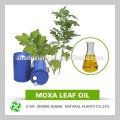 Best selling products natural blumea Oil