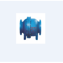 ODM for Lifting Check Valve Double Ball Micro-resistance Ball Check Valve supply to Tokelau Wholesale