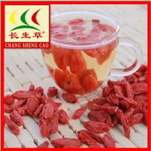 factory low price for Conventional Dried Goji Berry Ningxia special grade Nutrition Dried Goji Berries supply to Zambia Factory